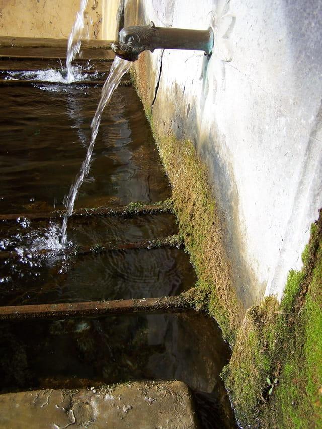 Fontana de Medge