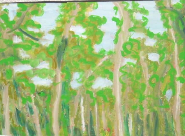 Forêt de bourgogne