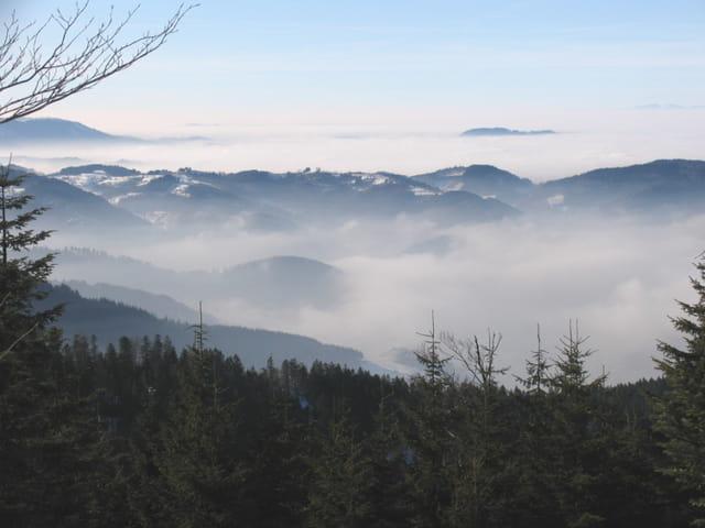 Forêt noire : vue sur la vallée du Rhin