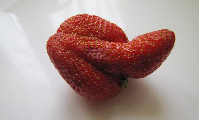 fraise sexy