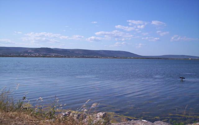 Frontigan et ses étangs