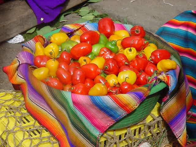 Fruits guatémalèques