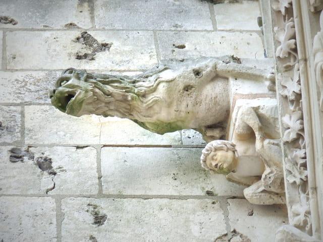 Gargouille de la cathédrale