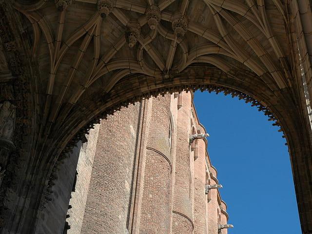 Gargouilles cathédrale d'Albi