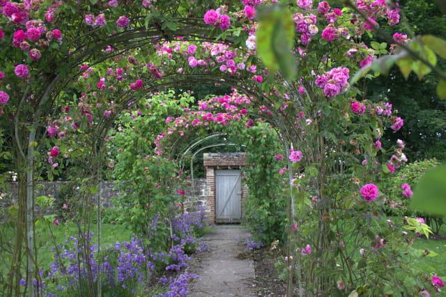 Gerberoy f te de la rose par nicole mylle sur l 39 internaute - Fete de la rose gerberoy ...