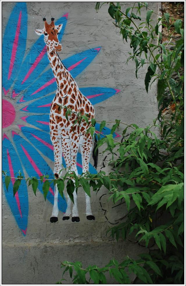 Girafe dans Paris