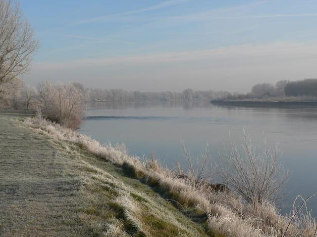 Givre en bord de Loire