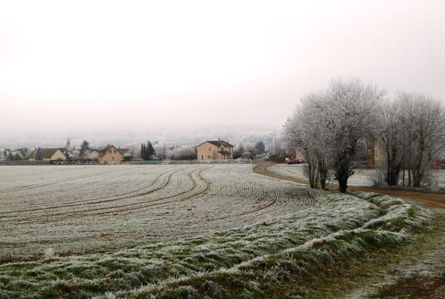 Givre et brume sur mon village