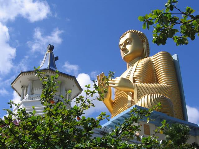 Golden temple 2