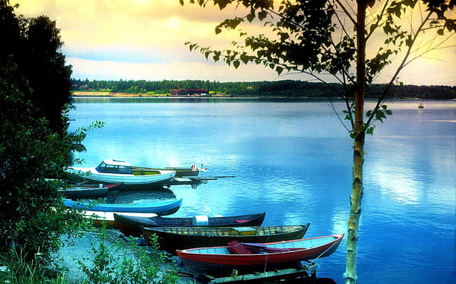 Grand calme au bord du lac