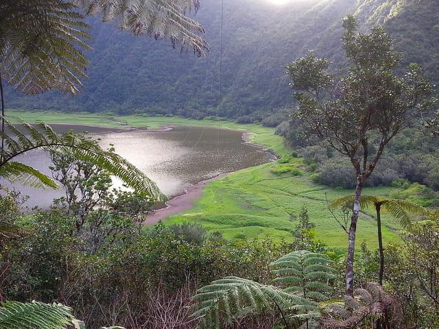 Grand étang (1)