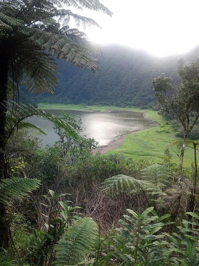 Grand étang (4)