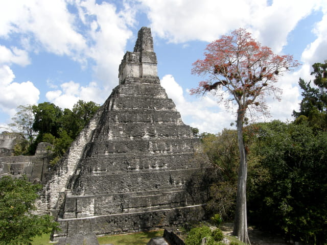 Grand Temle de Tikal