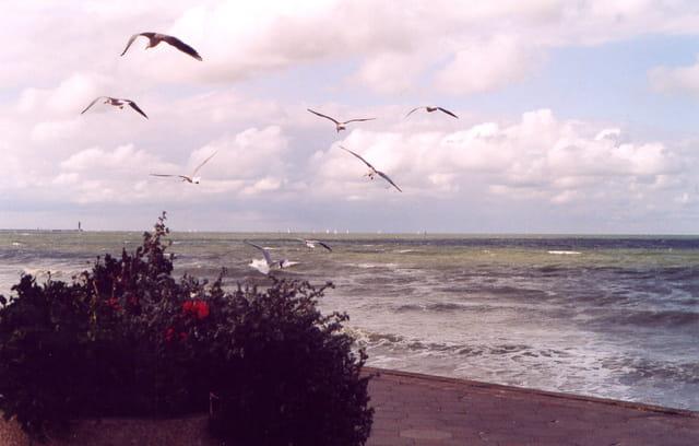 Grandes marées Dunkerque