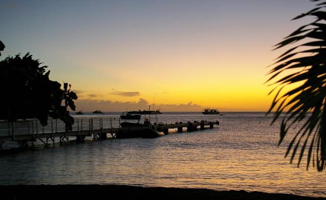 Guadeloupe (copie)