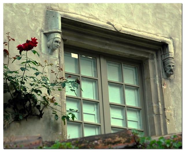 Histoire de fenêtre