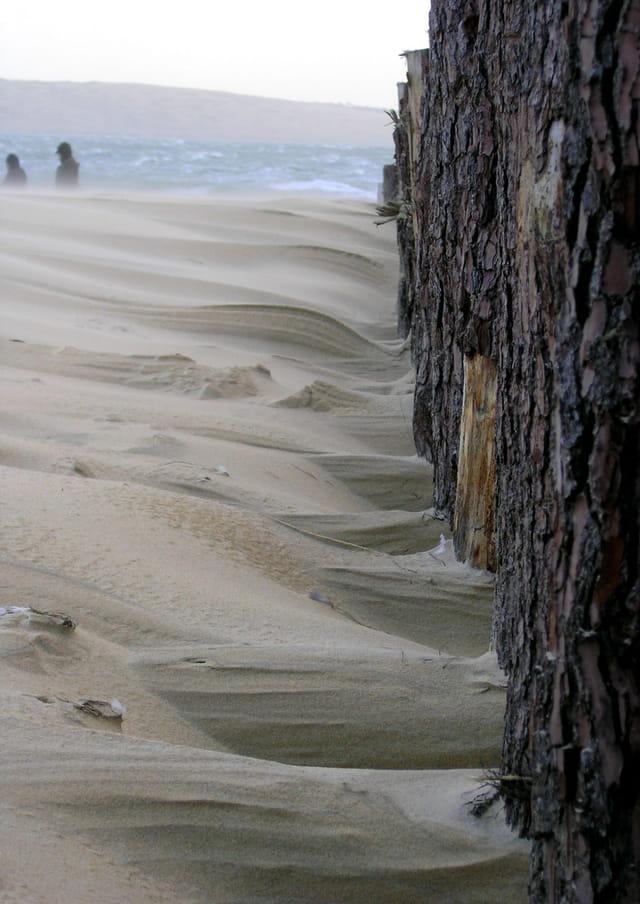 Hiver à la plage