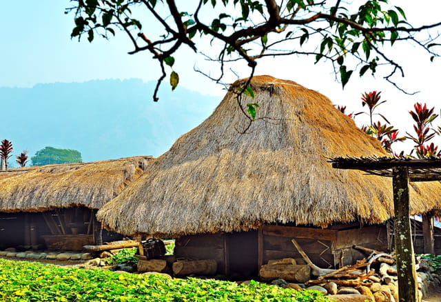 Huttes des tribus Bontoc