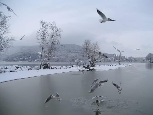 Il a neigé sur le lac d'annecy.....