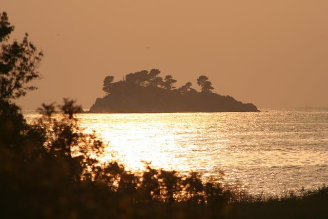 Ile de l'Adriatique