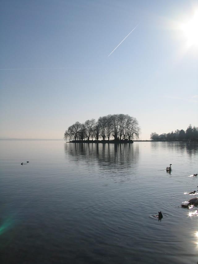 Ile du lac léman