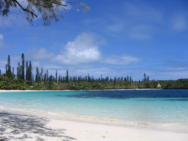 Iles des pins : le paradis