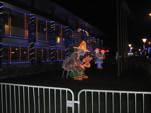 Illumination 2008