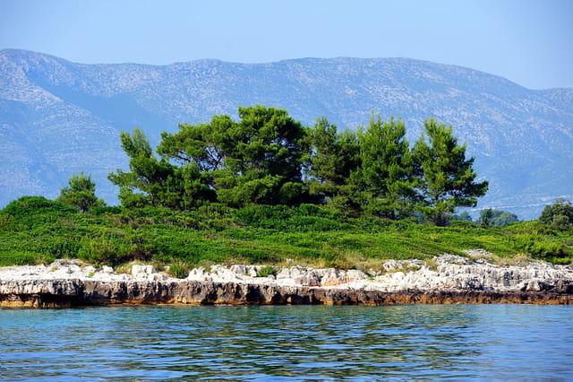 Ilot de verdure sur les eaux pures de l'Adriatique