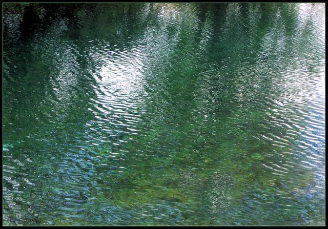 Impressionnisme  d'eau