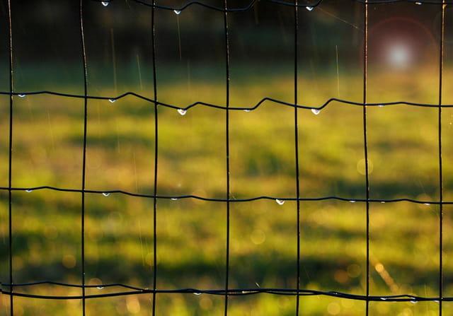Incidence de la pluie et du soleil sur une clôture