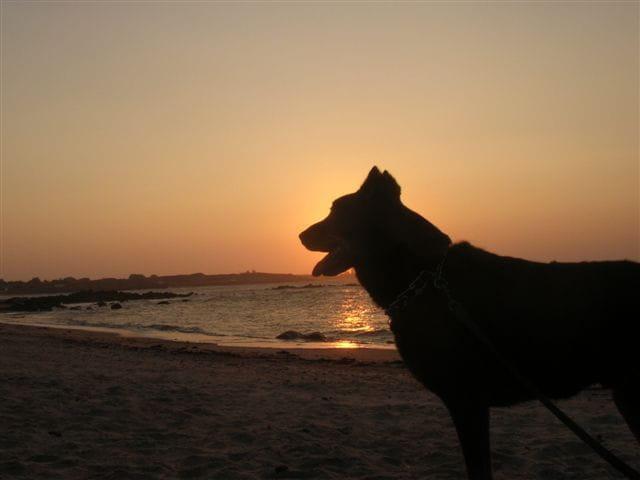 Ix  admire le coucher de soleil