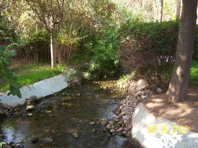 Jardin à Agadir
