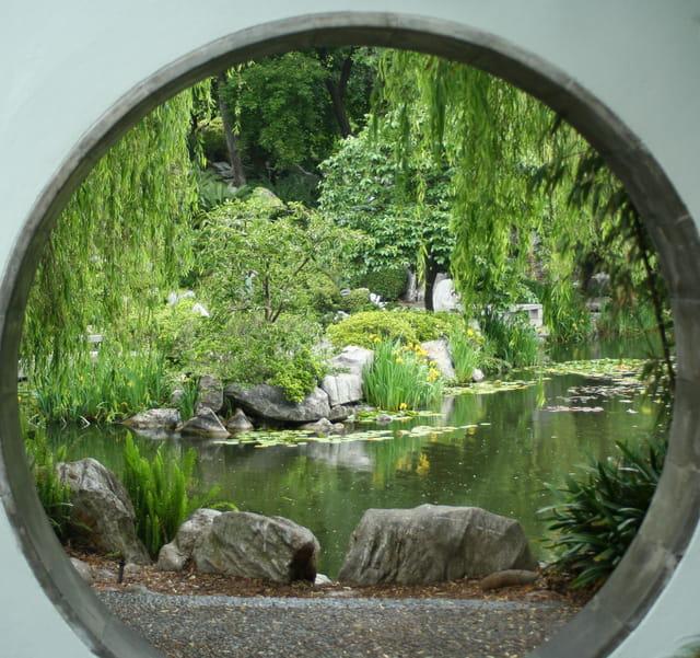 Jardin chinois sydney par arleth emery sur l 39 internaute for Jardin chinois
