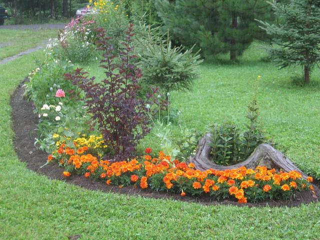Jardin de Monique
