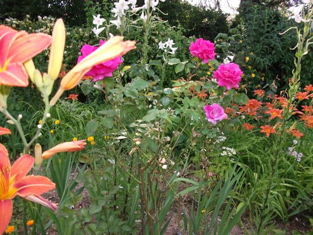Jardin de particulier par raymonde michelier sur l 39 internaute for Jardin de particuliers a visiter