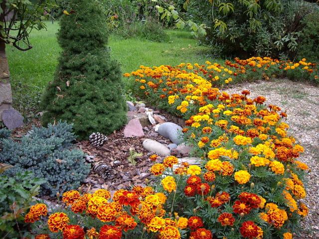 Jardin en normandie par annick thierry sur l 39 internaute for Jardin jardinier normandie