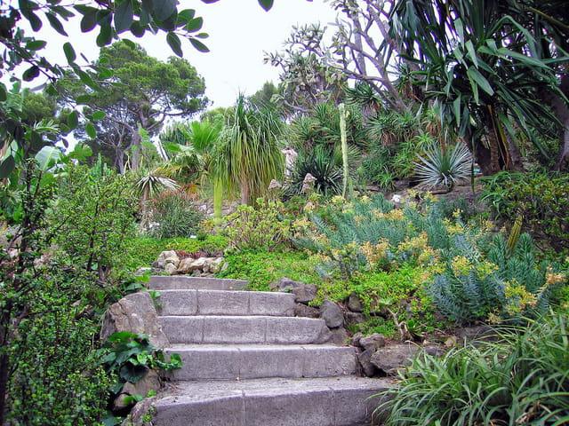 Jardin Exotique (3)