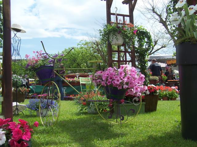 jardin fleuri par jean marc puech sur l 39 internaute. Black Bedroom Furniture Sets. Home Design Ideas