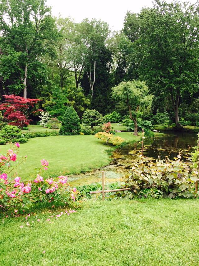 jardin japonais par claudine papy le garrec sur l 39 internaute. Black Bedroom Furniture Sets. Home Design Ideas