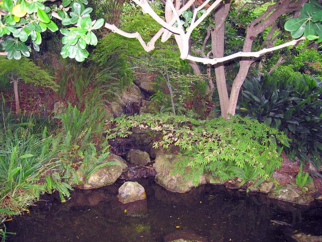 Jardin Japonais (6)