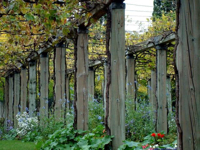 Jardin paris bercy