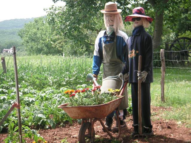 Jardiniers à la main verte
