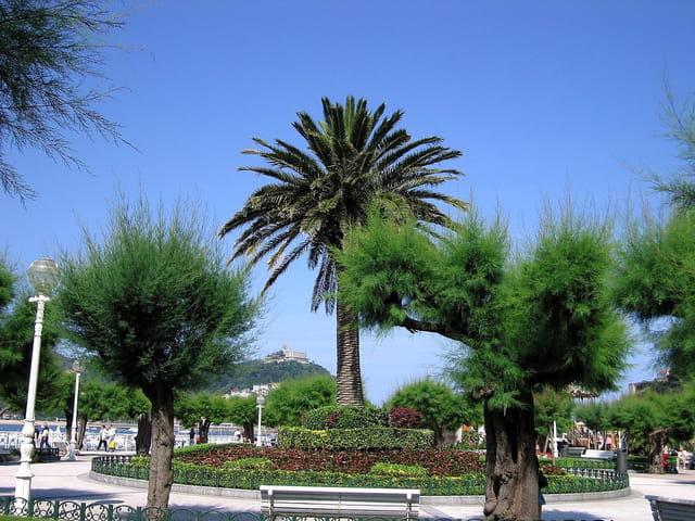 Jardins de l'hôtel de ville-San Sebastian (11)
