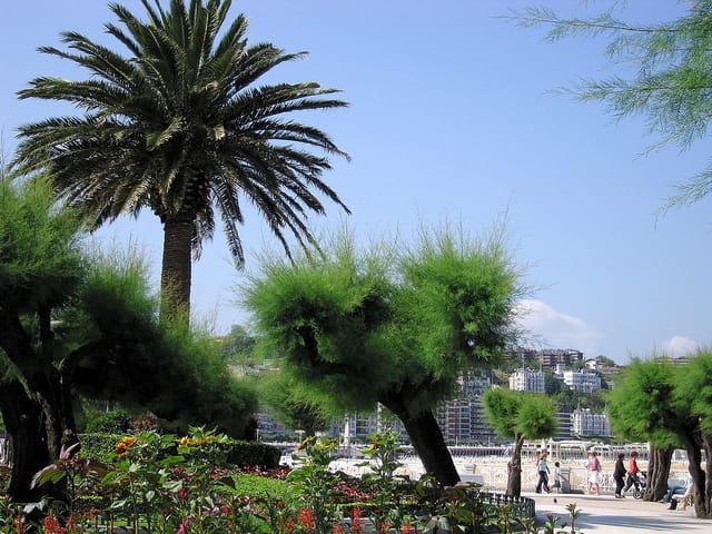 Jardins de l'hôtel de ville-San Sebastian (13)