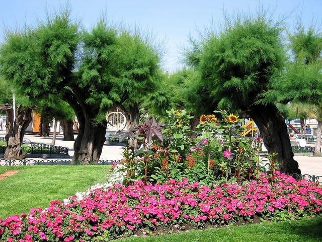 Jardins de l'hôtel de ville-San Sebastian (7)