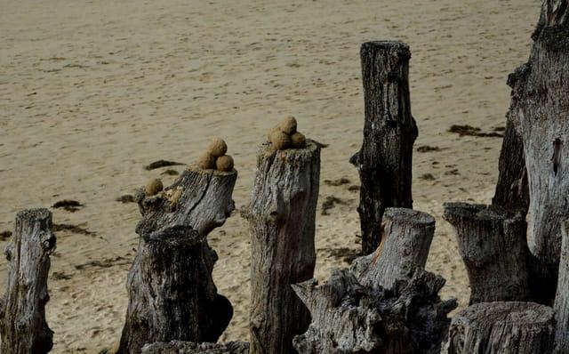 jeu de billes sur la plage