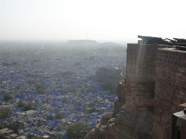 Jodhpur protégée