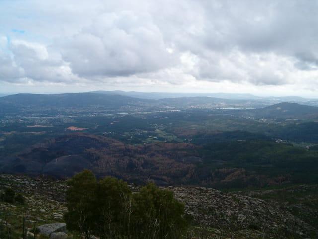 Joli paysage