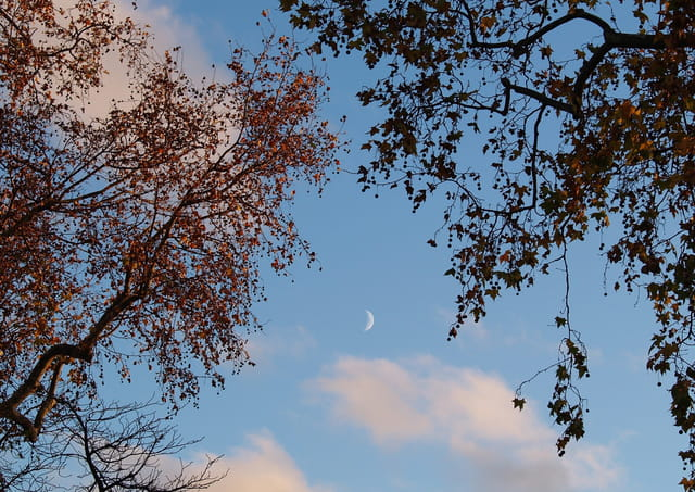 Jour d'automne jour de lune