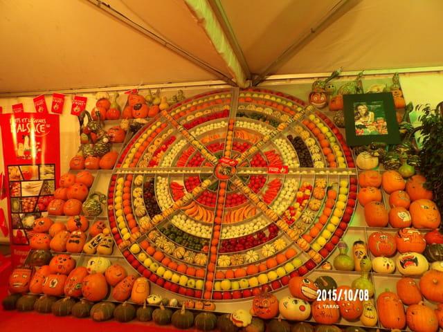 Journées d'octobre - Motif avec fruits et légumes